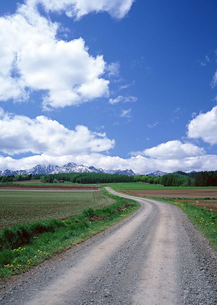 田野大道图片,田野大道,蓝天,白云,旅游风景,风景景观,摄影,自然风景