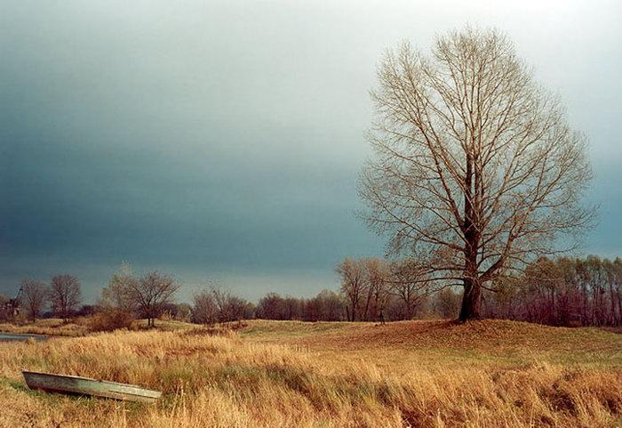荒野草地图片-素彩图片大全