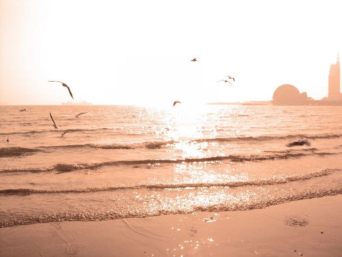 日落夕阳大海风景风光图片