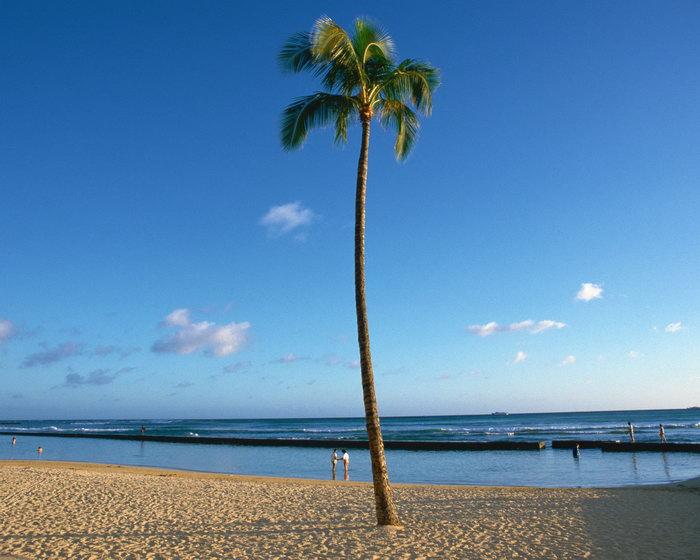 沙滩大海风景风光图片,沙滩风景夏威夷风光,蓝天白云,自然风景,摄影