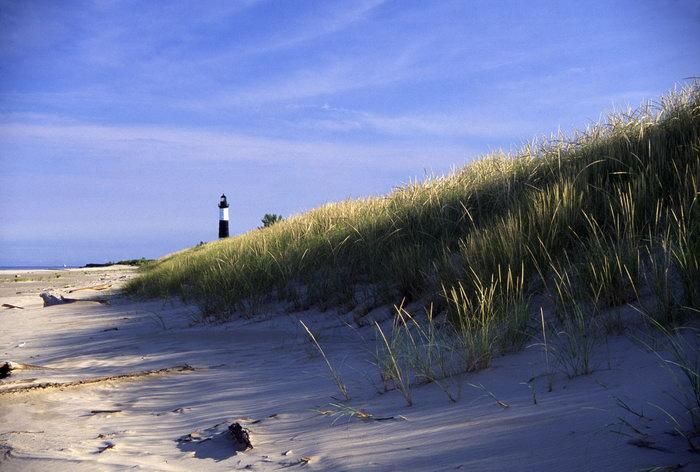 海滩草丛大海风景风光图片