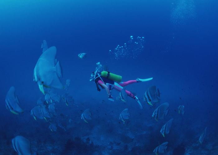 海底潜水大海风景风光图片
