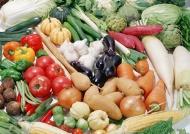 各种绿色蔬菜图片