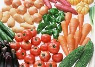 苦瓜蔬菜图片